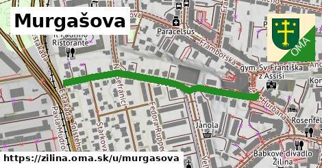 ilustrácia k Murgašova, Žilina - 464m