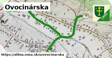 ilustrácia k Ovocinárska, Žilina - 671m