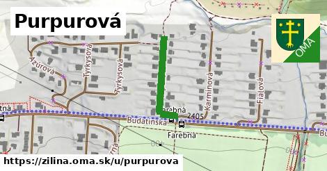 ilustračný obrázok k Purpurová, Žilina