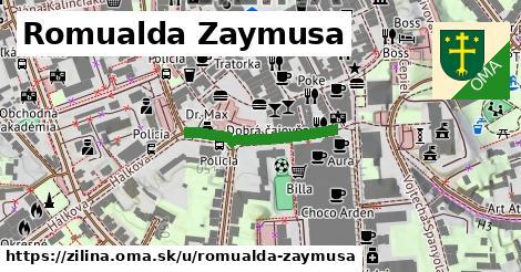 ilustračný obrázok k Romualda Zaymusa, Žilina