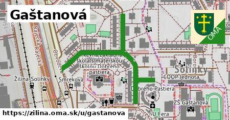 ilustrácia k Gaštanová, Žilina - 584m