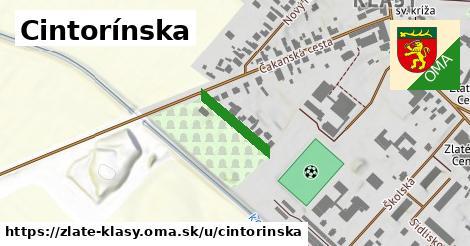 ilustrácia k Cintorínska, Zlaté Klasy - 145m