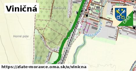 ilustrácia k Viničná, Zlaté Moravce - 0,99km