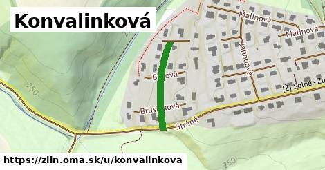 ilustrácia k Konvalinková, Zlín - 201m
