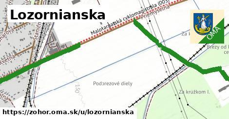 ilustrácia k Lozornianska, Zohor - 671m