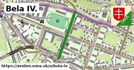 ilustračný obrázok k Bela IV., Zvolen