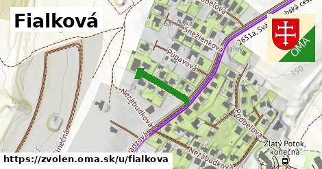 ilustračný obrázok k Fialková, Zvolen
