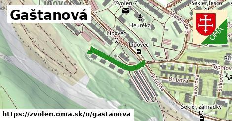 ilustrácia k Gaštanová, Zvolen - 208m
