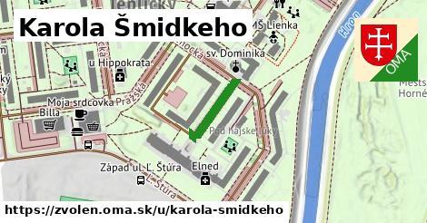 ilustračný obrázok k Karola Šmidkeho, Zvolen