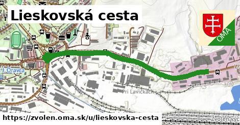 ilustračný obrázok k Lieskovská cesta, Zvolen