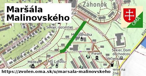 ilustračný obrázok k Maršála Malinovského, Zvolen