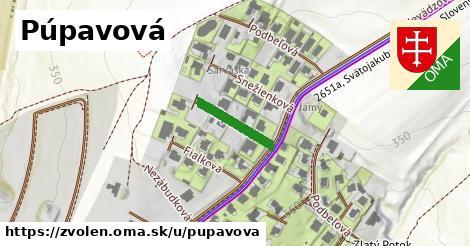 ilustrácia k Púpavová, Zvolen - 139m
