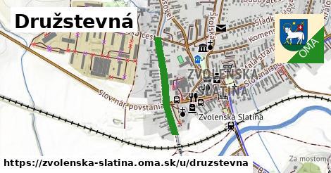 ilustračný obrázok k Družstevná, Zvolenská Slatina