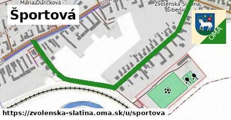 ilustrácia k Športová, Zvolenská Slatina - 0,72km