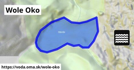 ilustračný obrázok k Wole Oko
