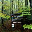 Badínsky prales podla wikipedie