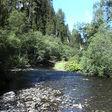 Čierny Váh (rieka) podla wikipedie