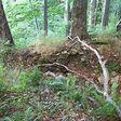 Černiny (vrch v Bukovských vrchoch) podla wikipedie